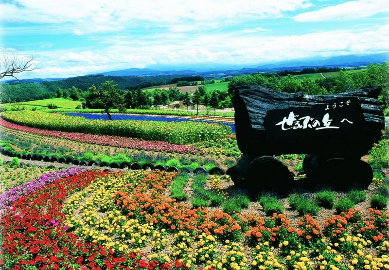20130422154826325 27500 - 7 Wisata Menawan yang Sempurna Keindahan Kota Biei Jepang
