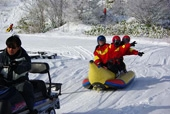 Snowmobiles and Other Snow Activities